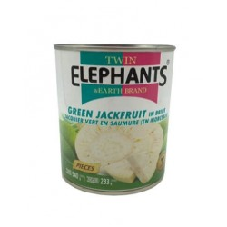 Green Jackfruit in Brine 540g. (Twin Elephant)